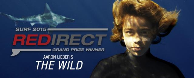 アーロン・リーバーがREDirect Surfに優勝